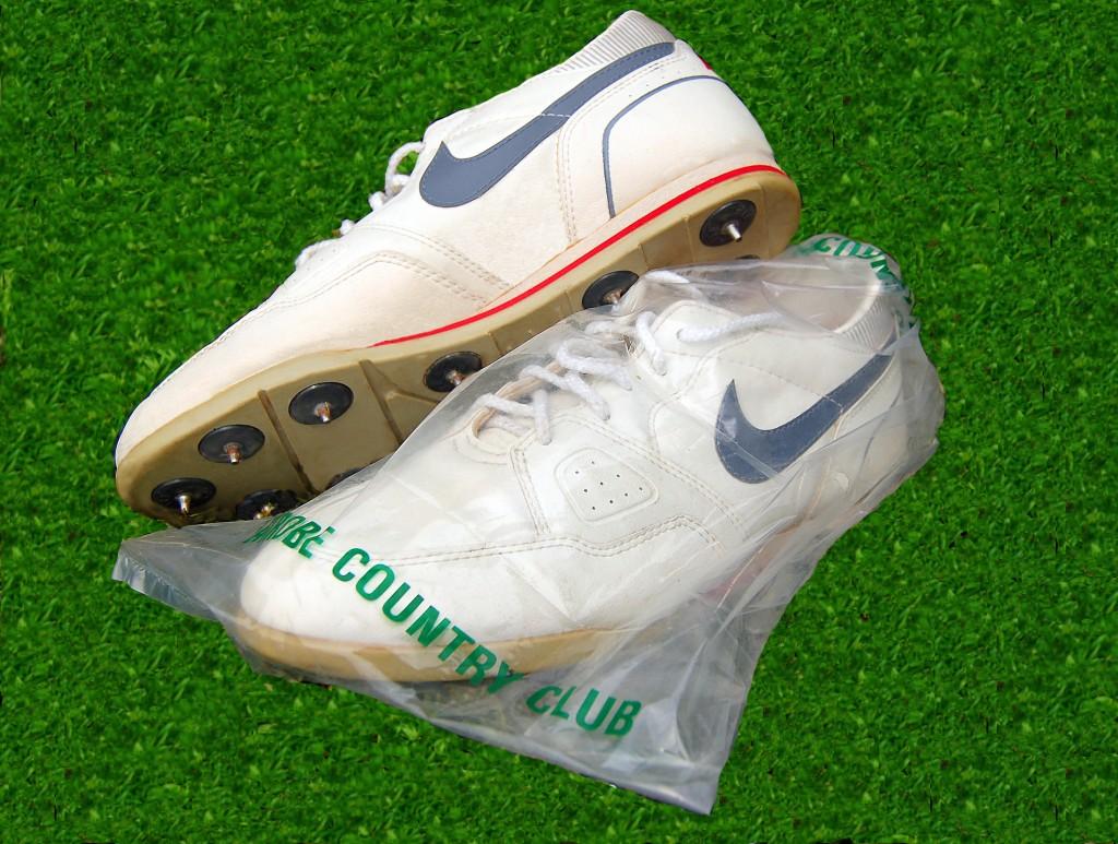 shoe storage bags